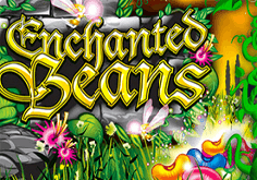 Enchanted Beans Slot