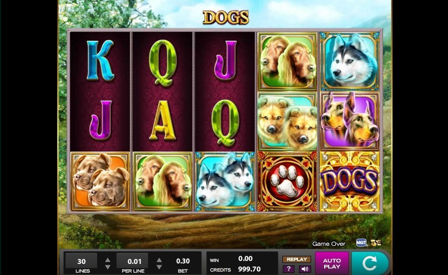 Dogs Slot Review