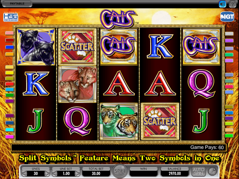 Cats Slot Review