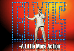 Elvis A Little More Action Slot