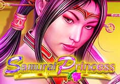 Samurai Princess Slot