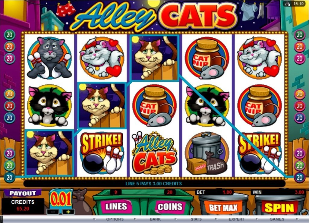 Alley Cats Slot Review