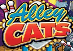 Alley Cats Slot