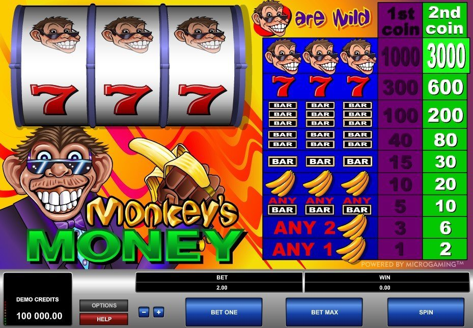 Monkeys Money Slot Review
