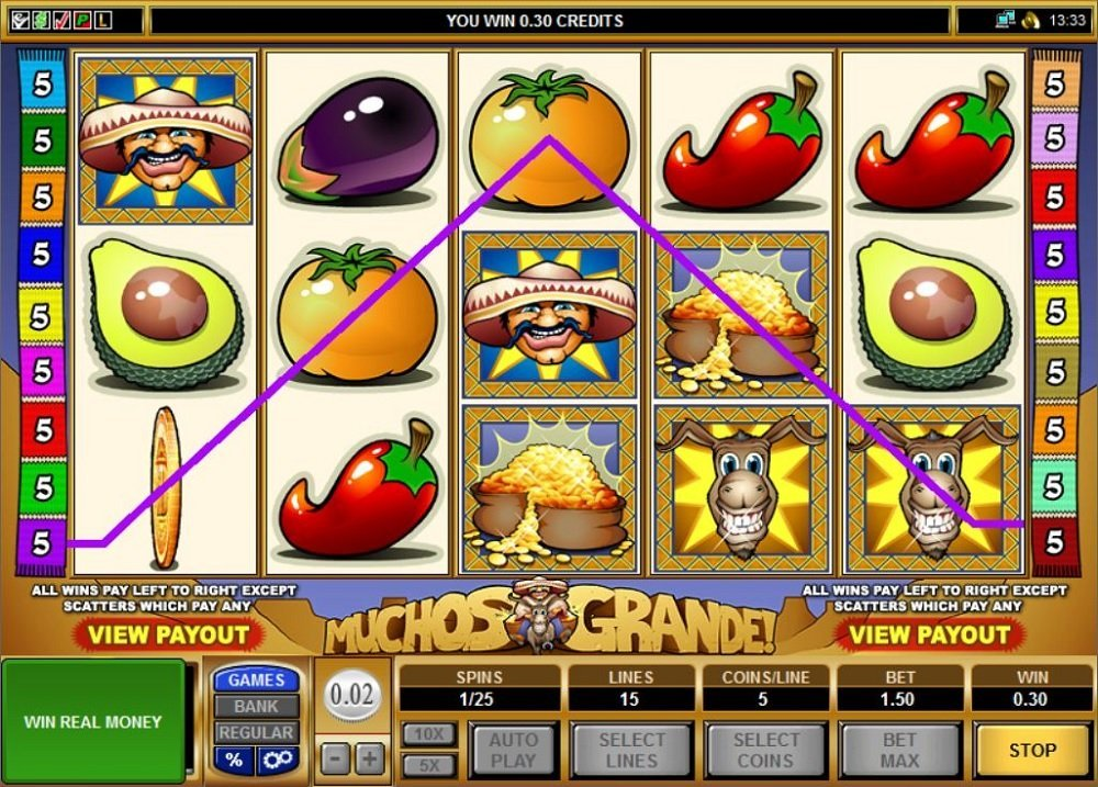 Muchos Grande Slot Review