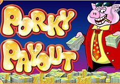 Porky Payout Slot