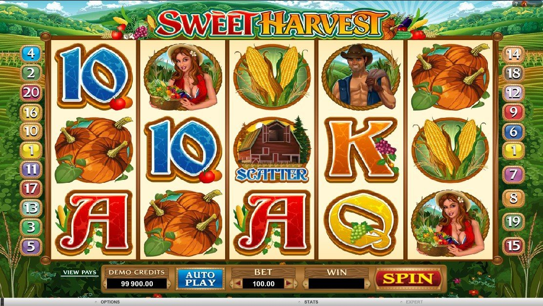Sweet Harvest Slot Review