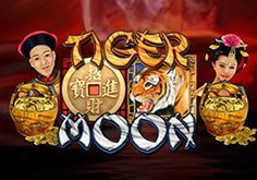 Tiger Moon Slot