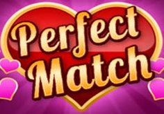 Perfect Match Slot