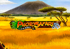Photo Safari Slot