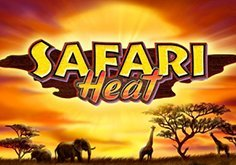 Safari Heat Slot
