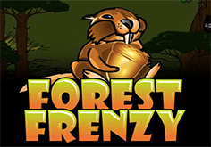 Forest Frenzy Slot