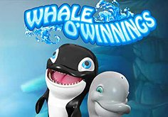Whale O Winnings Slot